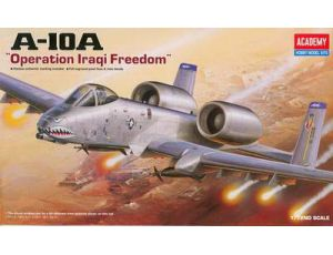A-10A Iraq version