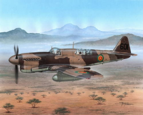 """Fairey Firefly Mk.I """"Foreign Service"""""""